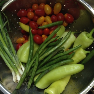 tomatoes, sweet gypsy peppers, green onions, and green beans